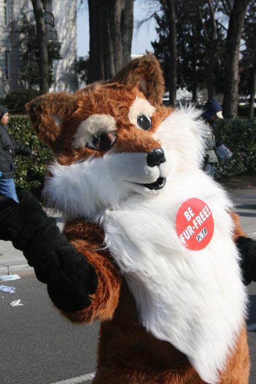 21 Fur Free